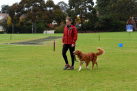 Dog Club Fun Day June 5 2016